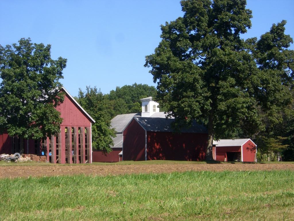 tobacco_barn_2.jpg
